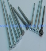 Wood screws/Dowel Series 1 for Nylon Anchors